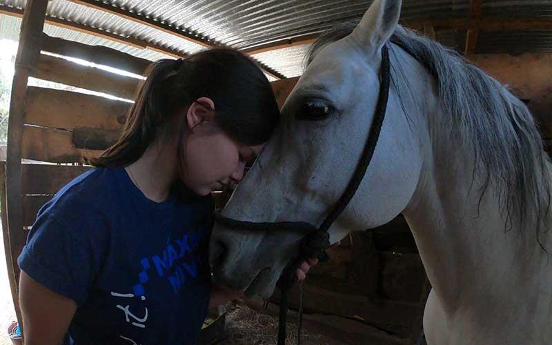 Horse-Rehabilitation-Volunteer-Guatemala