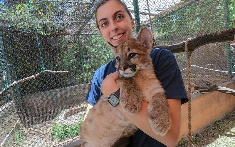 Veterinary-Zoo-Volunteer-Project