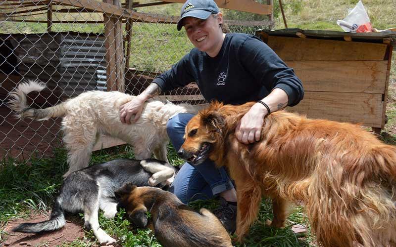 Veterinary-dog-shelter-Volunteer-Project