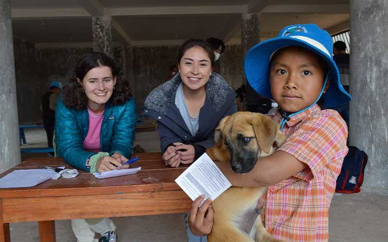 Veterinary-vaccination-campaign-Volunteer-Project