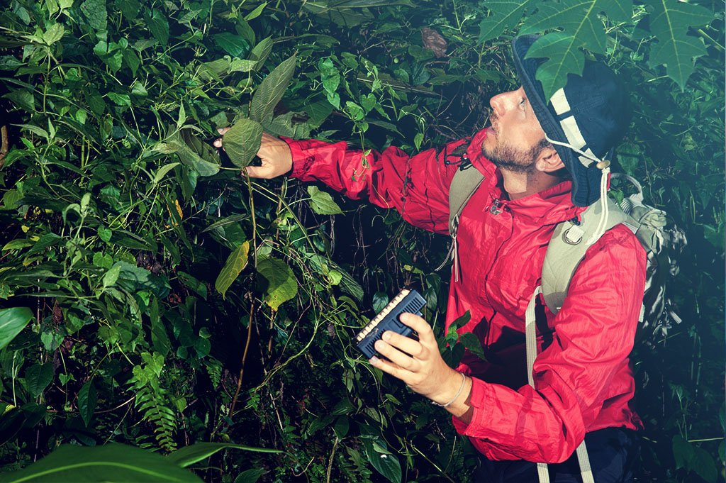 Multidisciplinary Research on Medicinal Plants