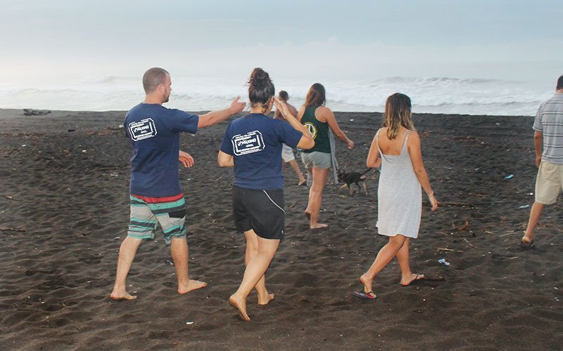 Volunteer in Beach Conservation in Costa Rica