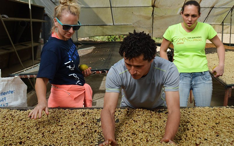 Volunteer in Eco-Agriculture in Guatemala