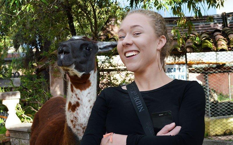 Volunteer at University Zoo Abroad